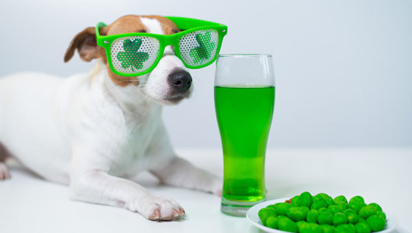 The Best St. Patrick's Day Activities for a Day Full of Fun